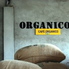 The coffee is organic