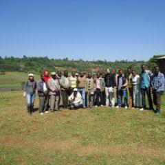 Taramesa Kooperative