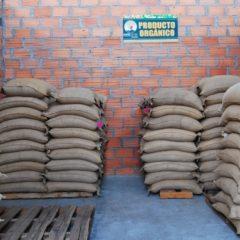 Der Kaffee ist nach ökologischen Kriterien angebaut