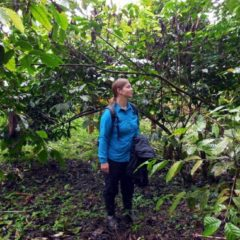 Nadine in the robusta forest