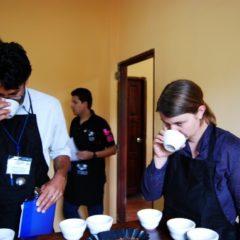 Cupping für den Kaffeewettbewerb