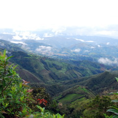Ecuador highlands
