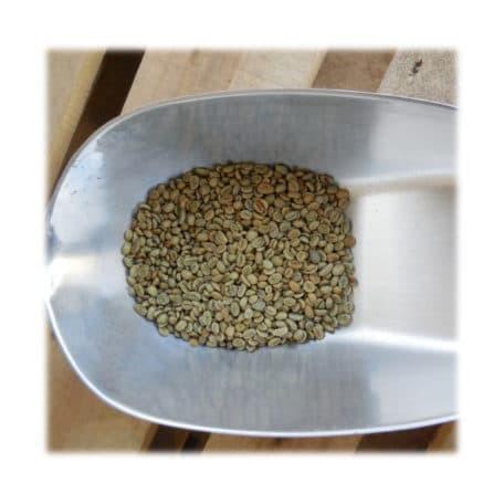 Rohkaffee aus Ecuador zum selbströsten
