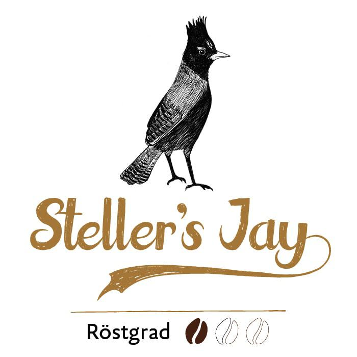 Steller's Jay filter coffee