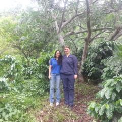 Kaffee Costa Rica, hier mit Veronica