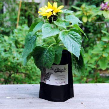 Upcycling Kaffee Beutel