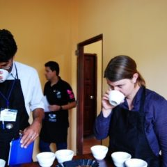 Cupping – coffee tasting