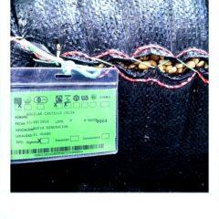 Cenfrocafe hat ein gut organisiertes Trackingsystem, mit dem es gelingt jedes Lot genau zu dokumentieren.