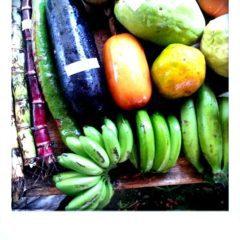 Die größten Früchte.