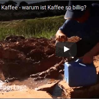 Warum ist Bio-Kaffee so wichtig?