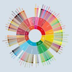 flavor wheel