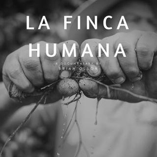 Kaffee aus Honduras Finca Humana