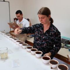 Cupping at D.O. Marcala