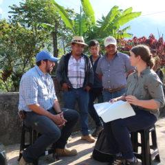 Kaffee in Guatemala